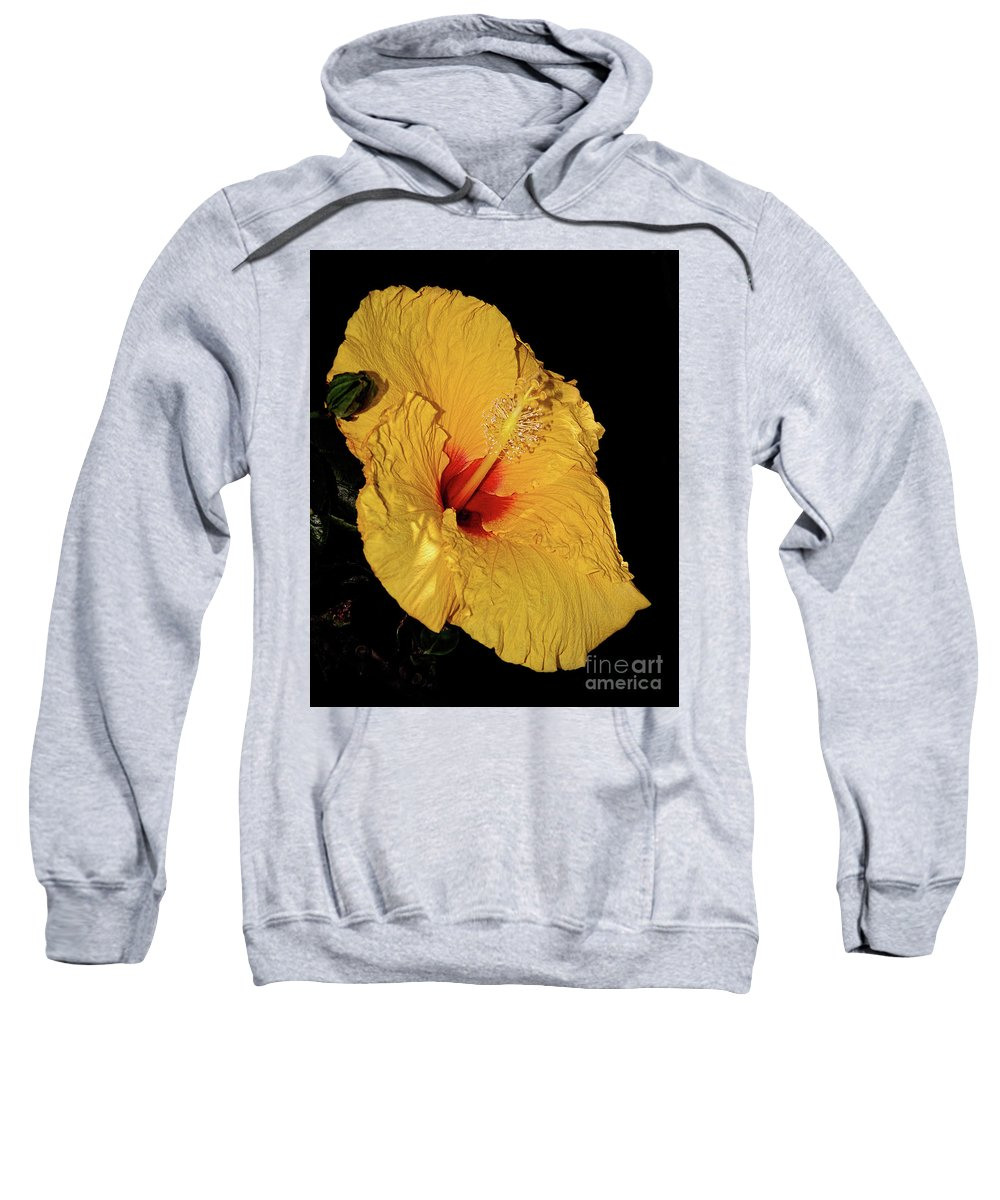 Photography Sweatshirt featuring the photograph Vibrant Yellow Hibiscus By Kaye Menner by Kaye Menner