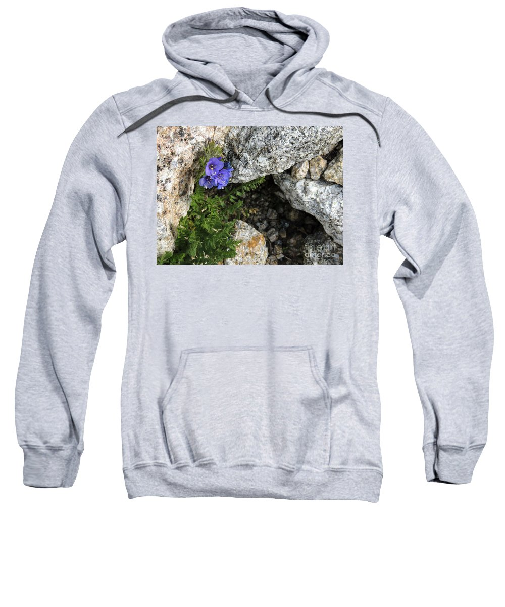 Climb Sweatshirt featuring the photograph Violet Climbing by Grant Bolei