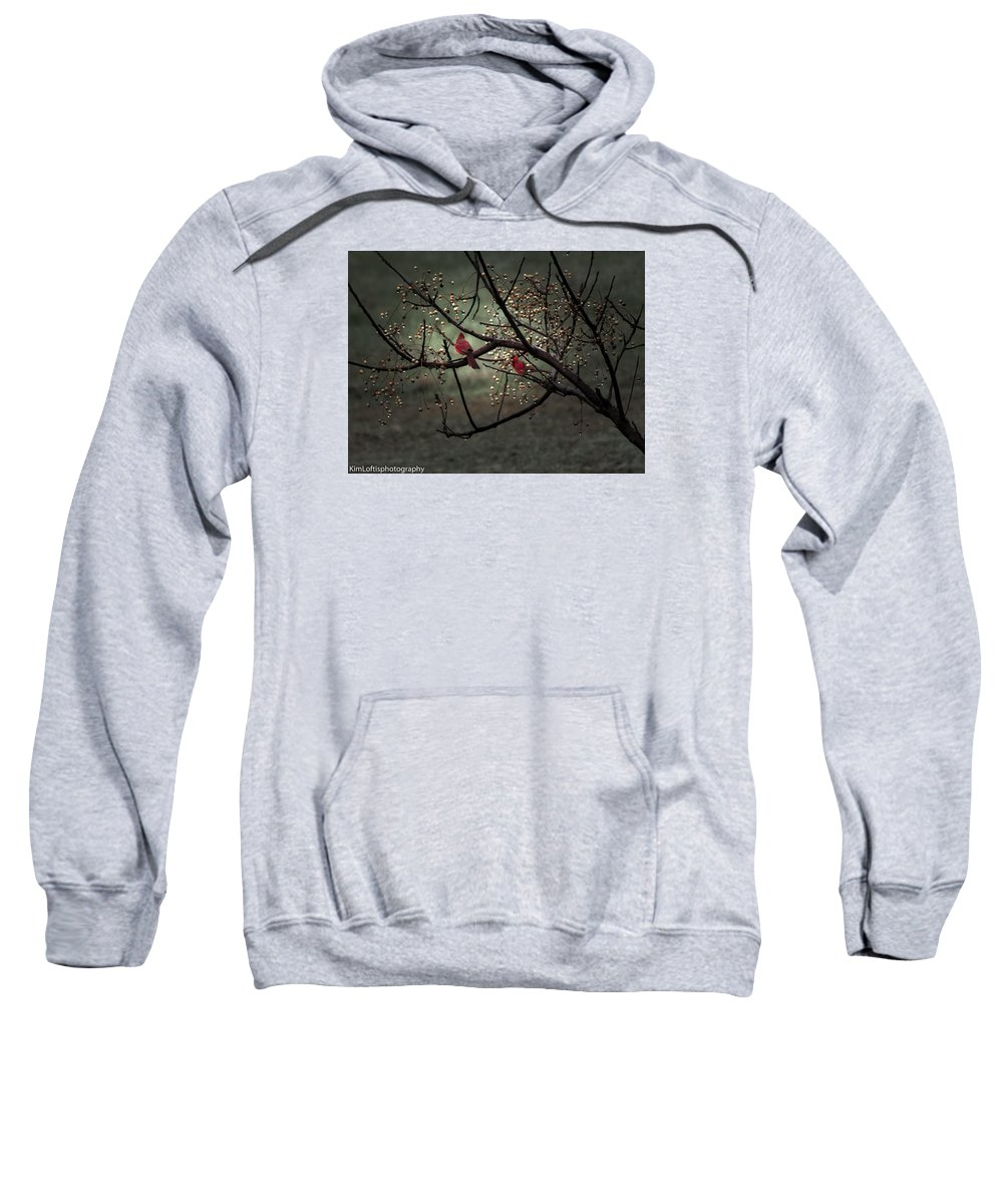 Cardinals Sweatshirt featuring the photograph Visitors by Kim Loftis