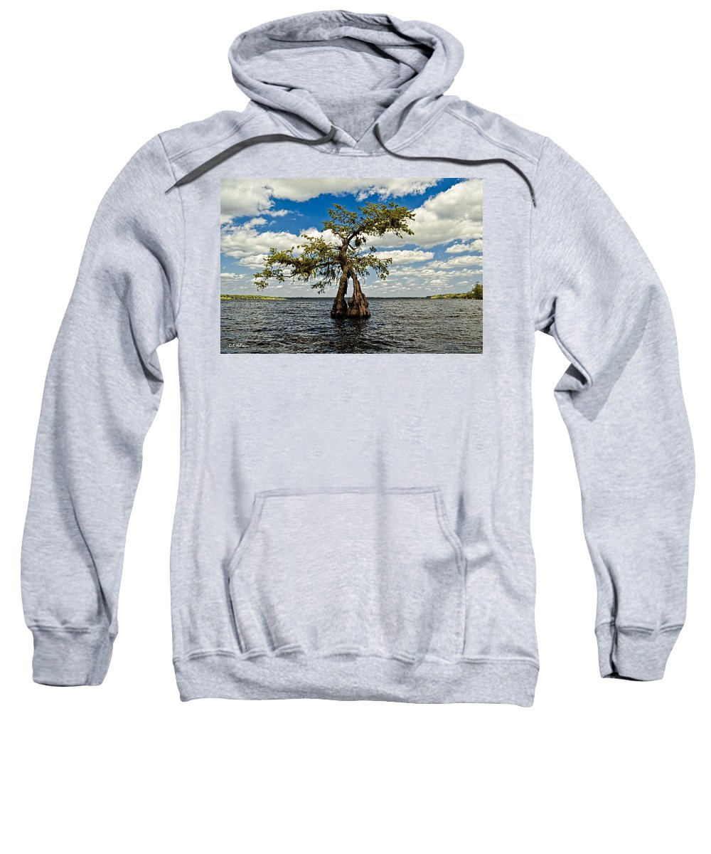 Tree Sweatshirt featuring the photograph Wading Across The Lake by Christopher Holmes