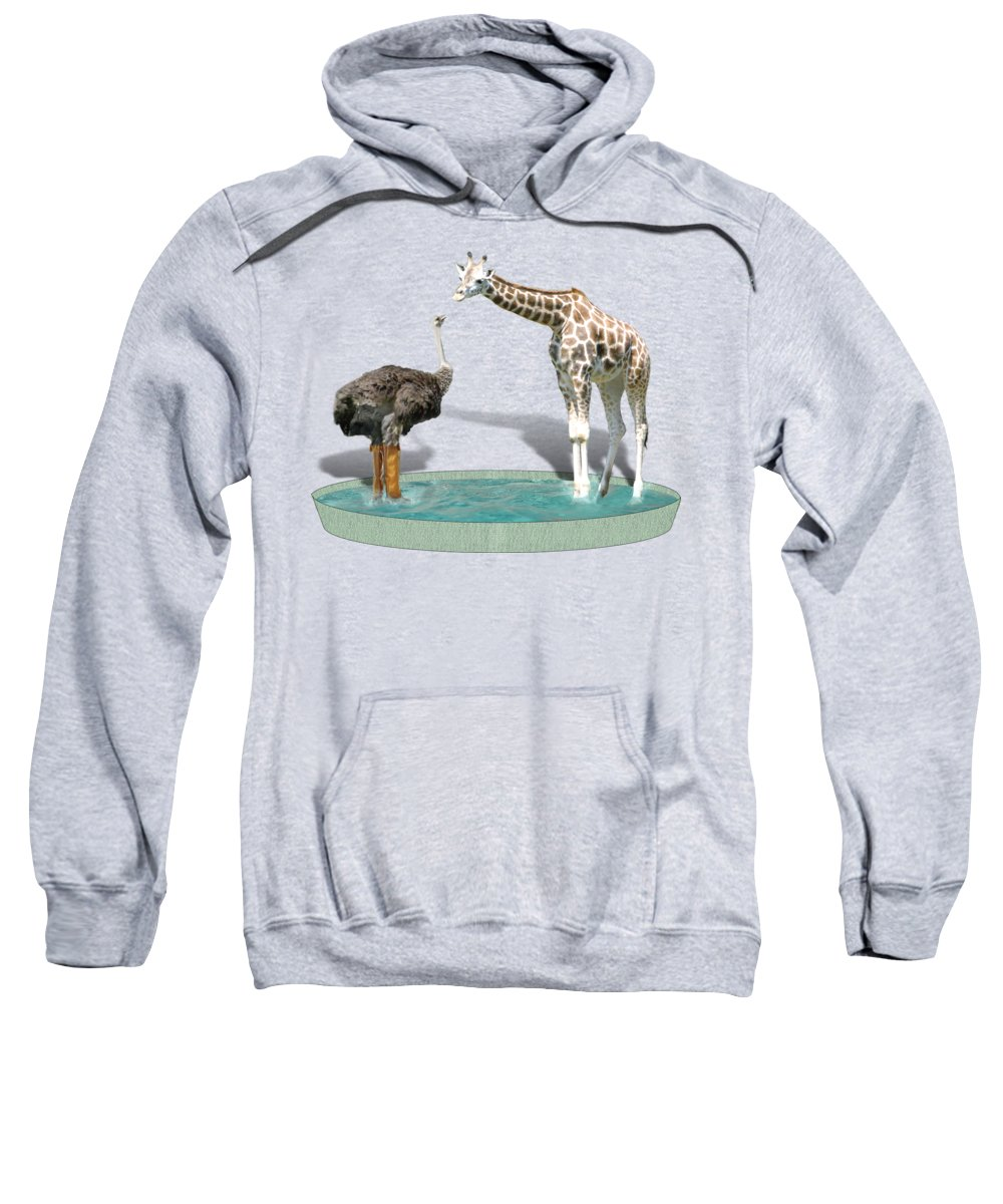 Ostrich Hooded Sweatshirts T-Shirts