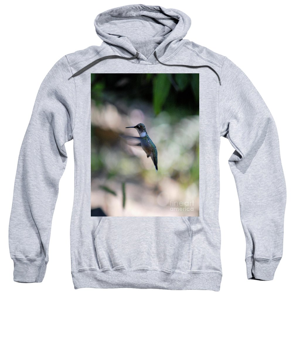 Hummingbird Sweatshirt featuring the photograph Waiting My Turn by Lori Tambakis