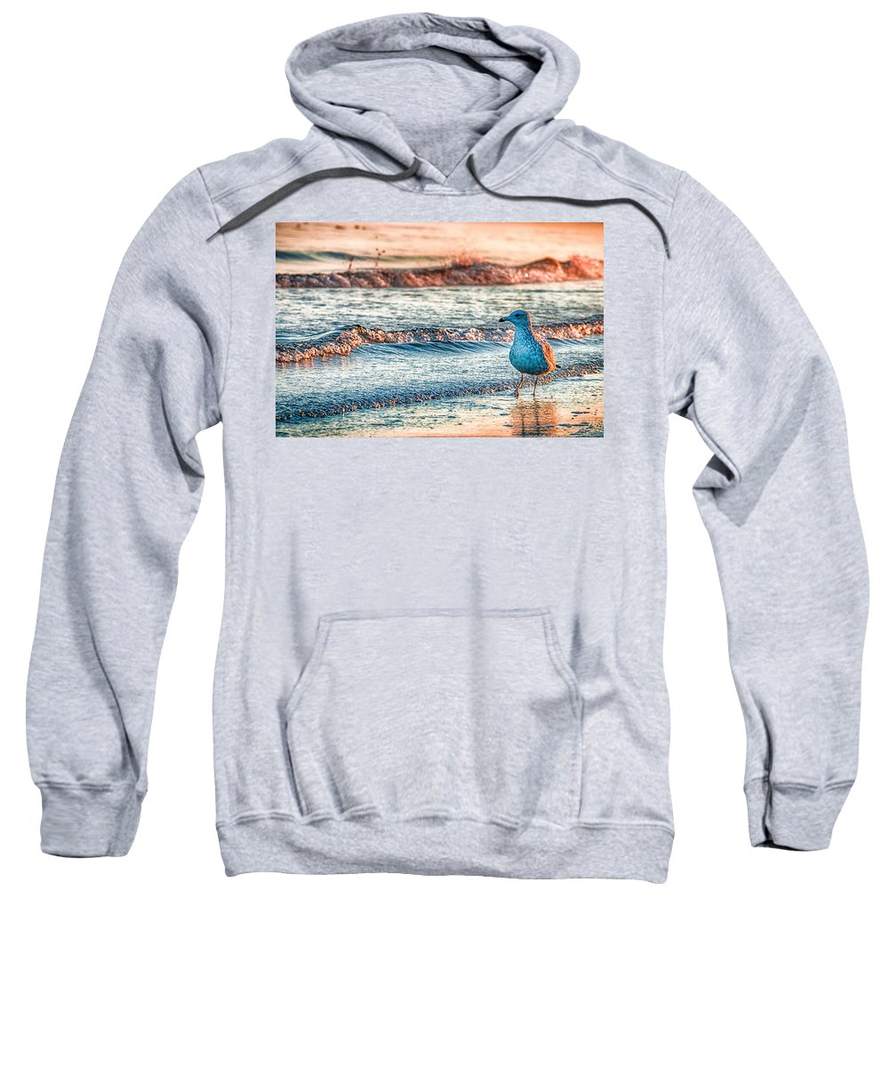 Water Hooded Sweatshirts T-Shirts