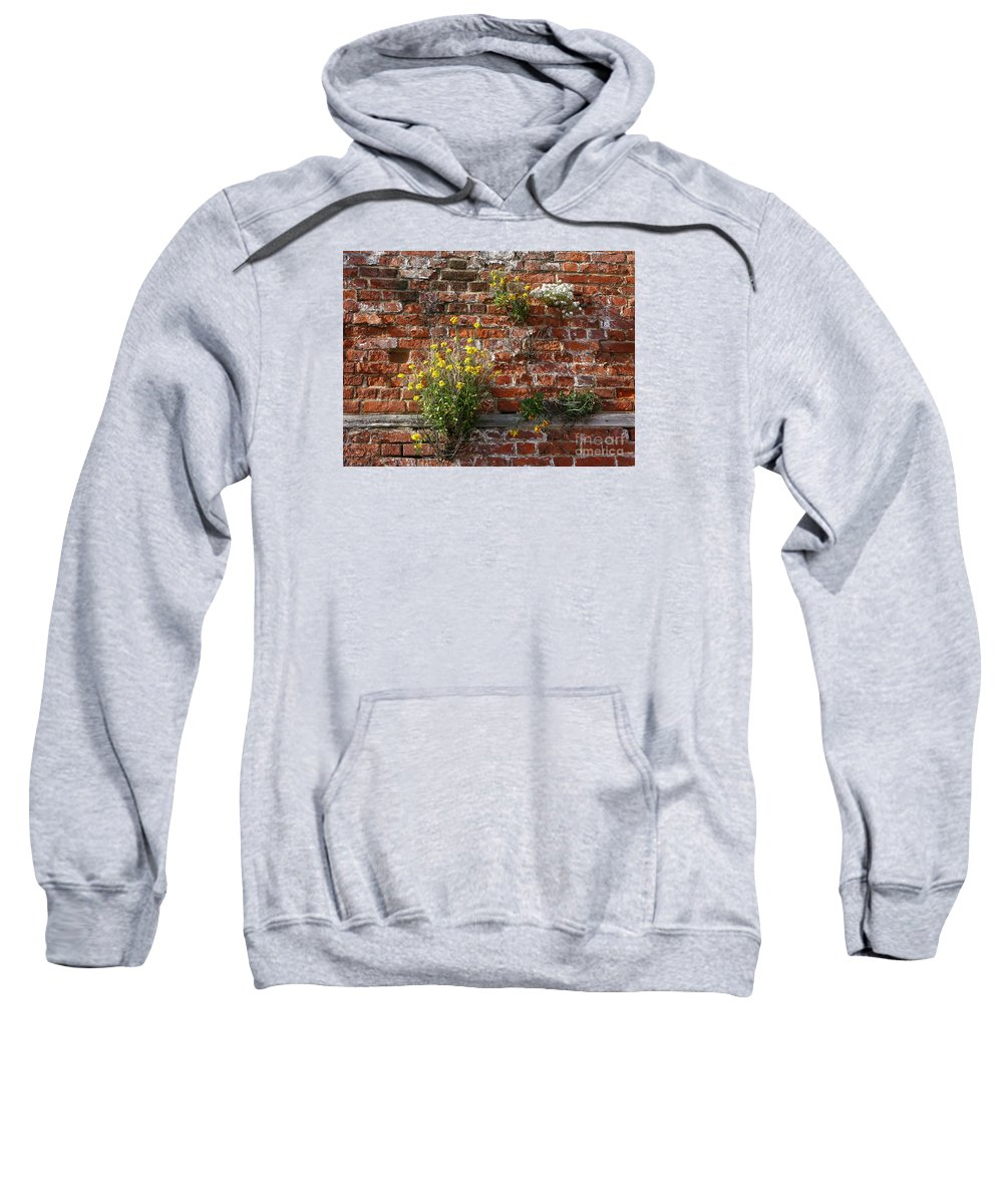 Wallflowers Sweatshirt featuring the photograph Wall Flowers by Ann Horn