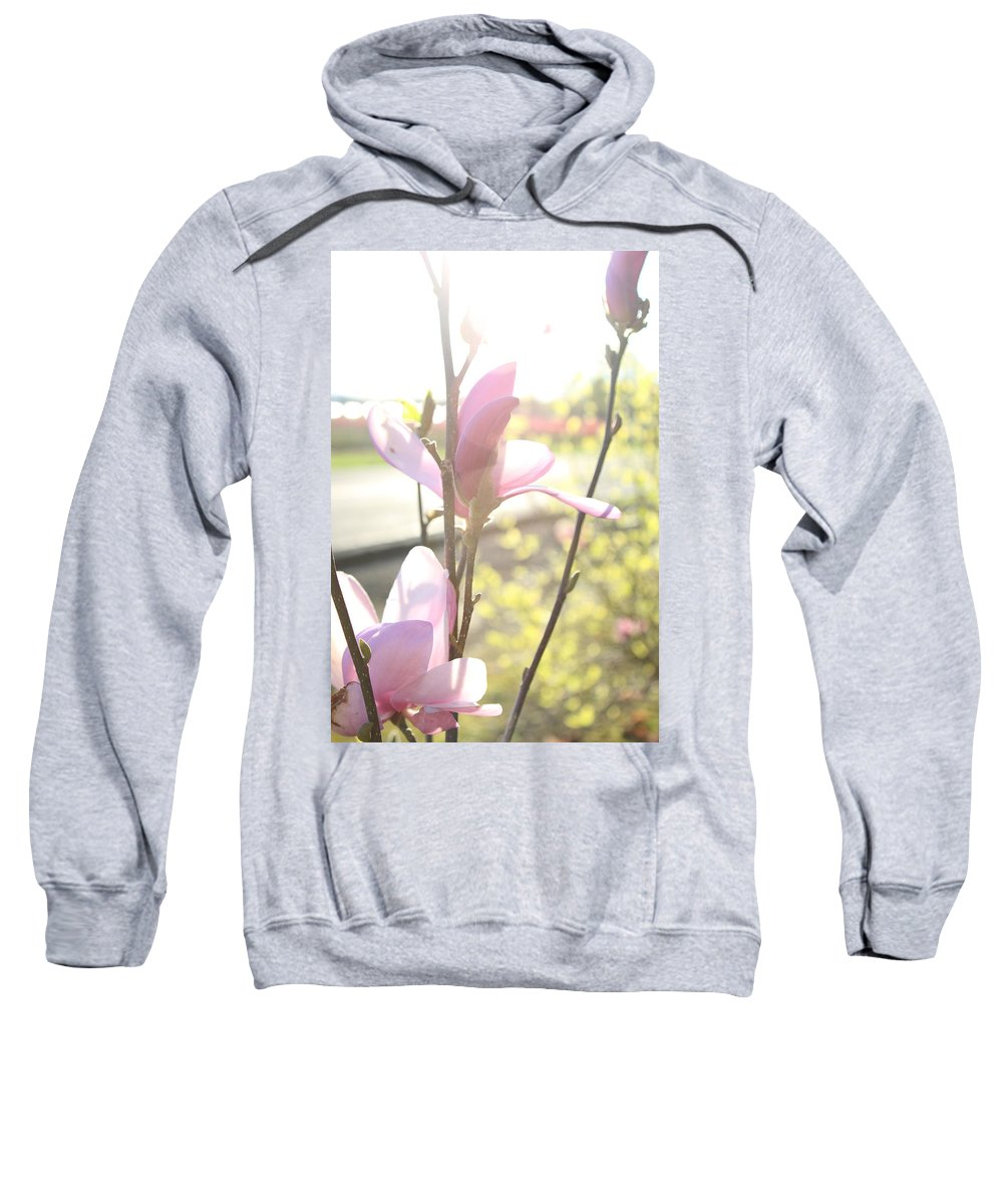 Sweatshirt featuring the photograph Warm Afternoon by Crooked Cat Art and Photography