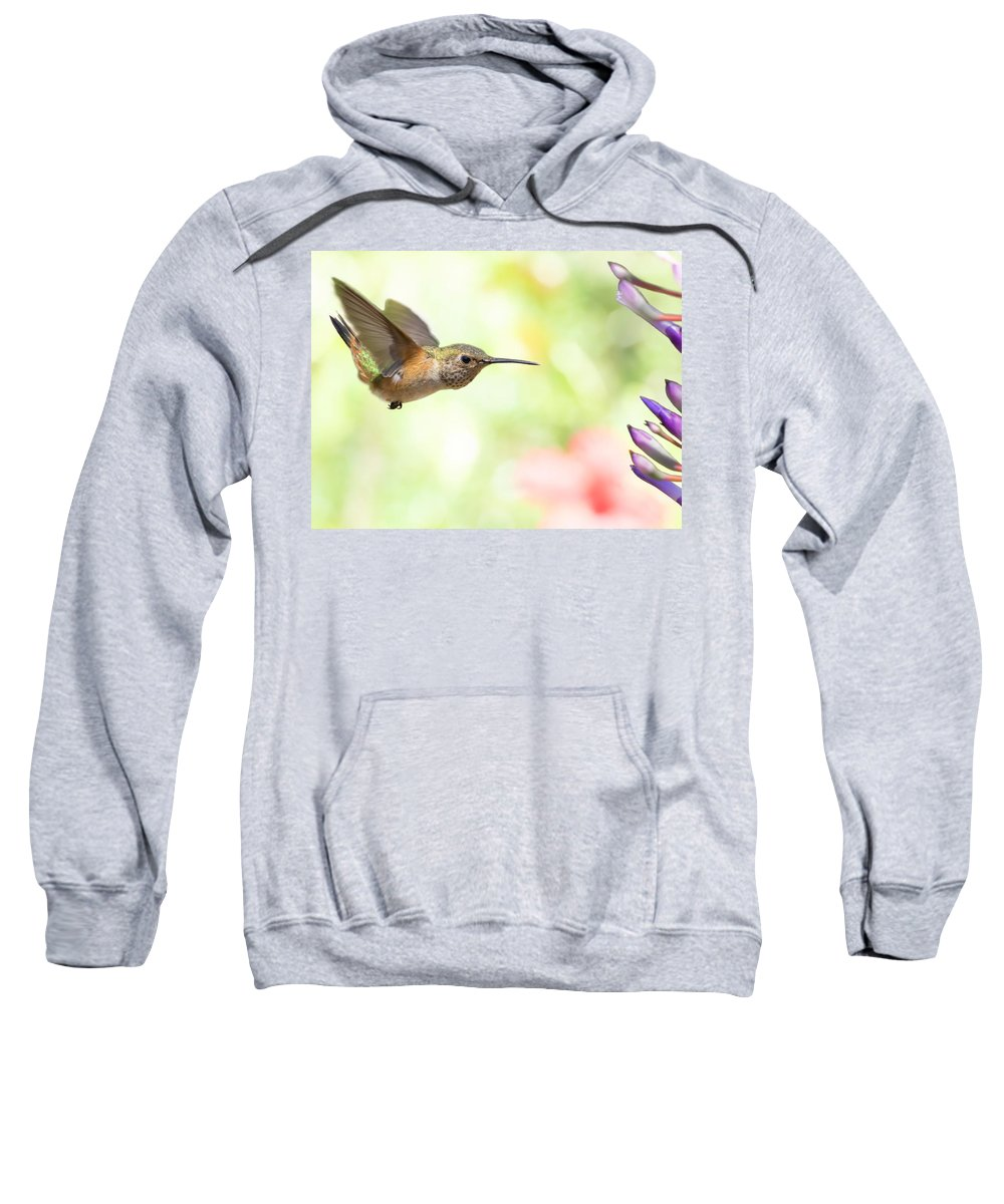 Hummingbird Sweatshirt featuring the photograph Washed Out by Mike Herdering
