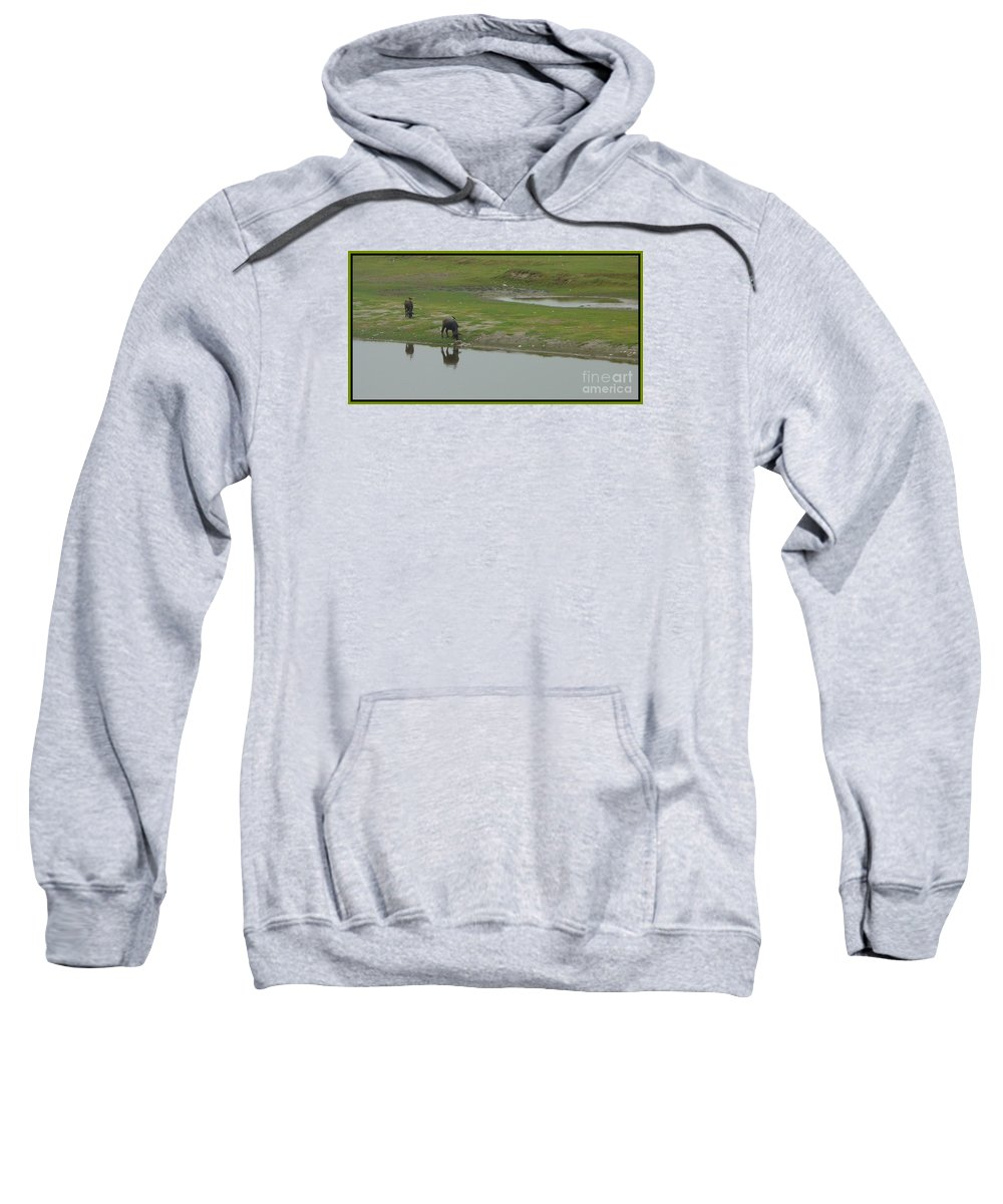 Water Sweatshirt featuring the photograph Water Buffaloe by Anita Goel