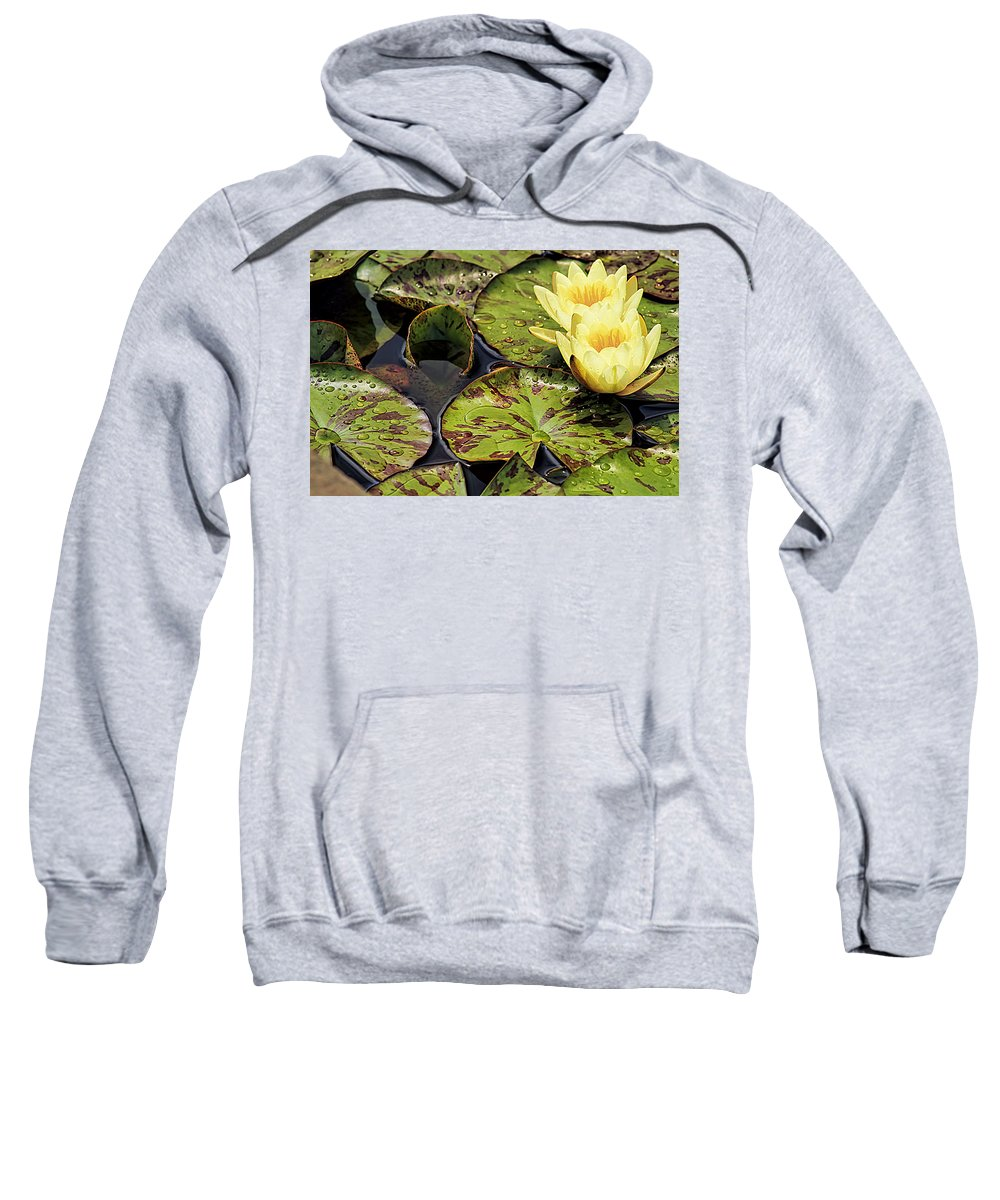 Spider Sweatshirt featuring the photograph Lotus Blossom by Geraldine Scull