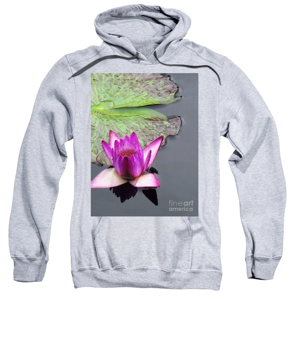 Lily Sweatshirt featuring the painting Water Lily With Rain Drops by Eric Schiabor