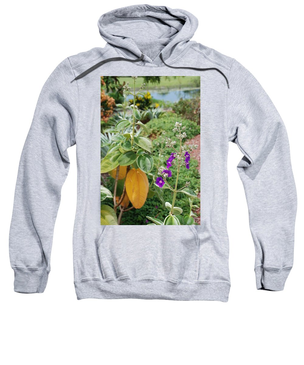 Water Sweatshirt featuring the photograph Water Plants And Flower by Rob Hans