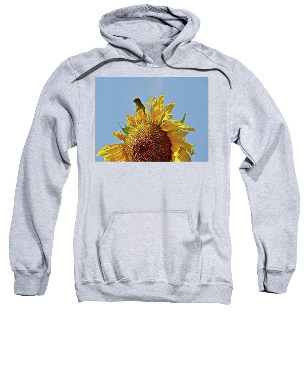 Flower Sweatshirt featuring the photograph We Match by Diana Hatcher