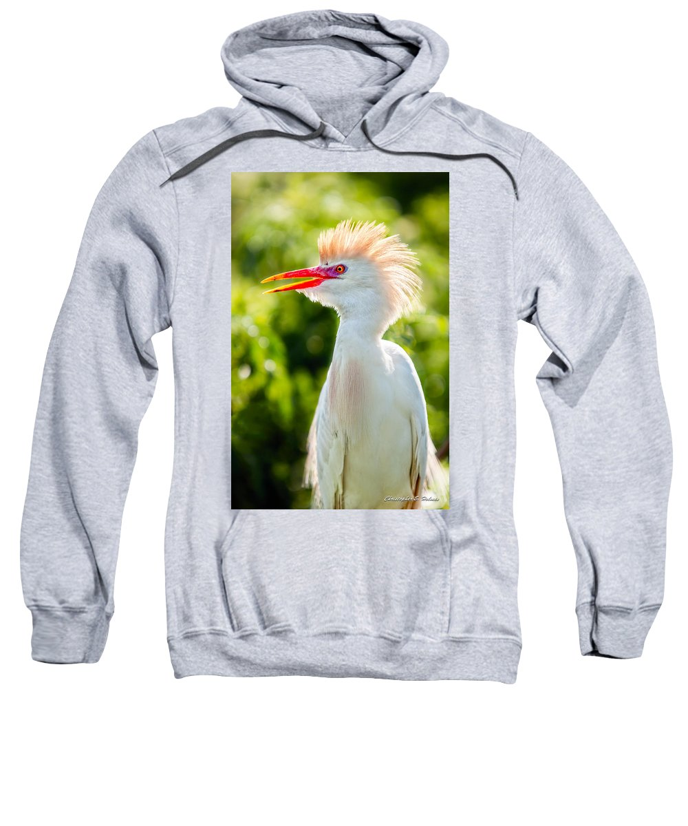 Art Sweatshirt featuring the photograph Wearing His Colors by Christopher Holmes