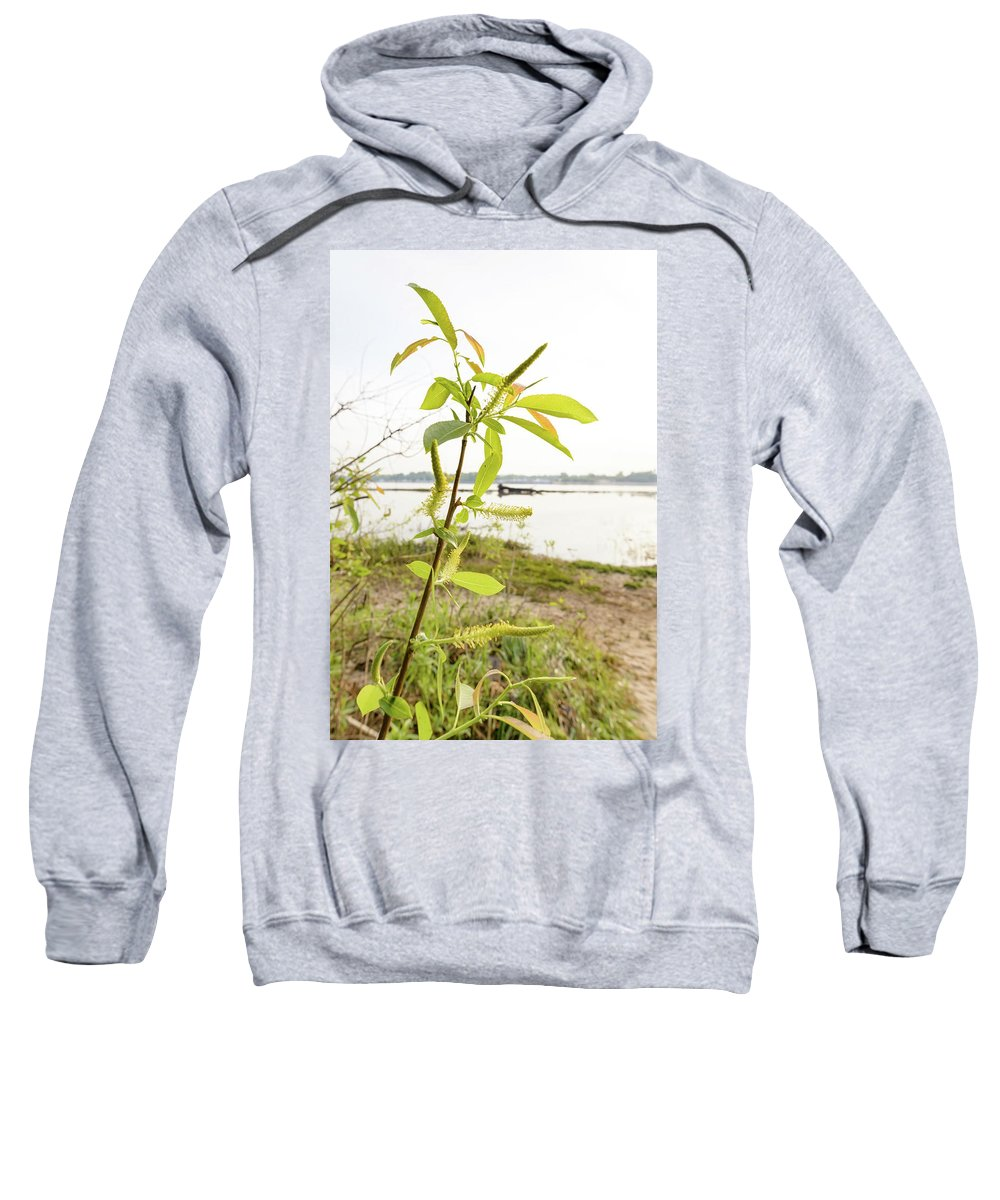 April Sweatshirt featuring the photograph Weeping Willow Close To The River by Alain De Maximy