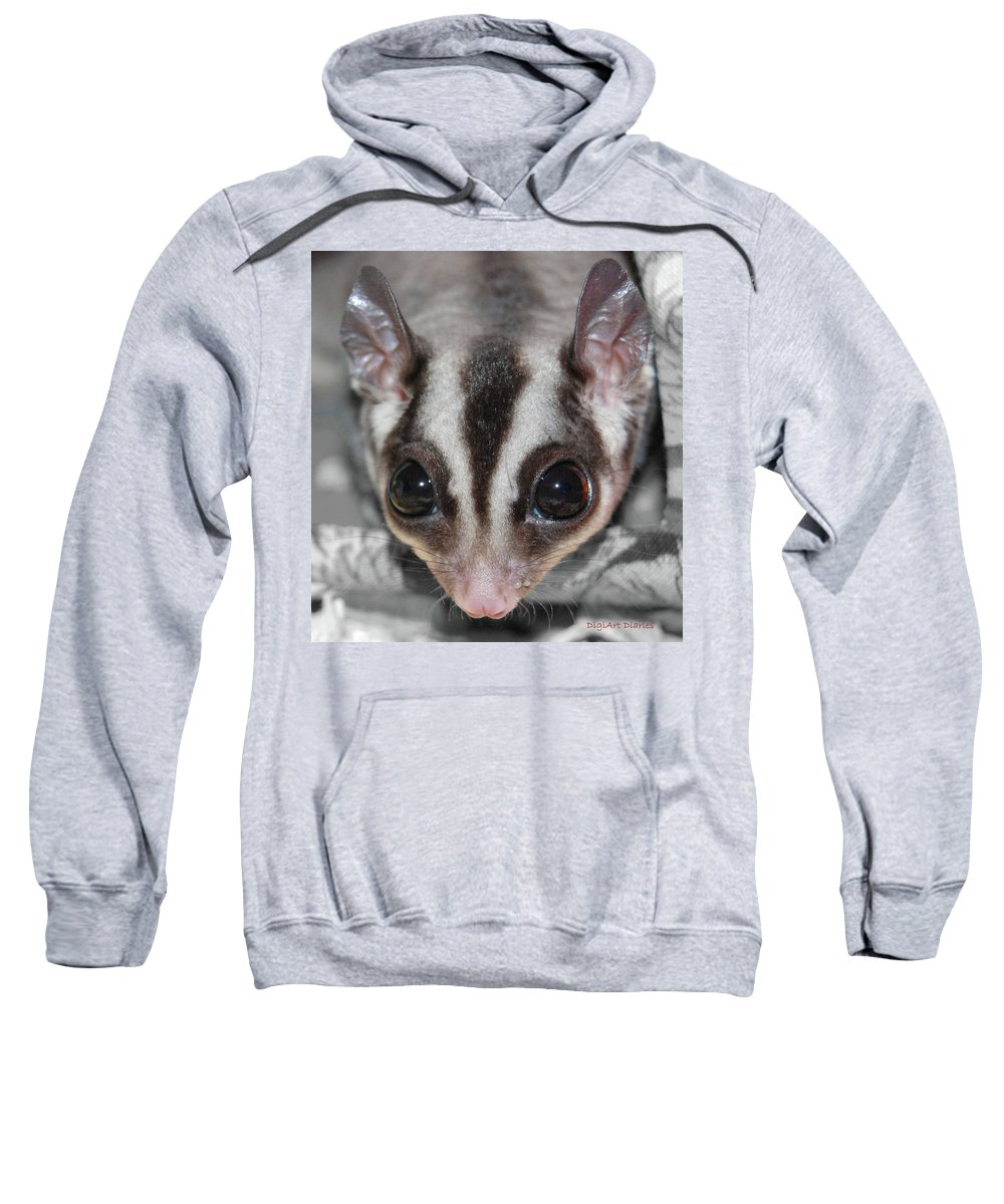 Sugar Glider Sweatshirt featuring the digital art Well Hello There by DigiArt Diaries by Vicky B Fuller