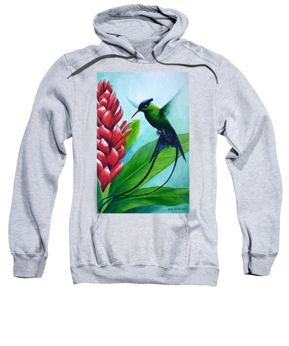 Western Streamertail Hummingbird Sweatshirt featuring the painting Western Streamertail Hummingbird by Christopher Cox