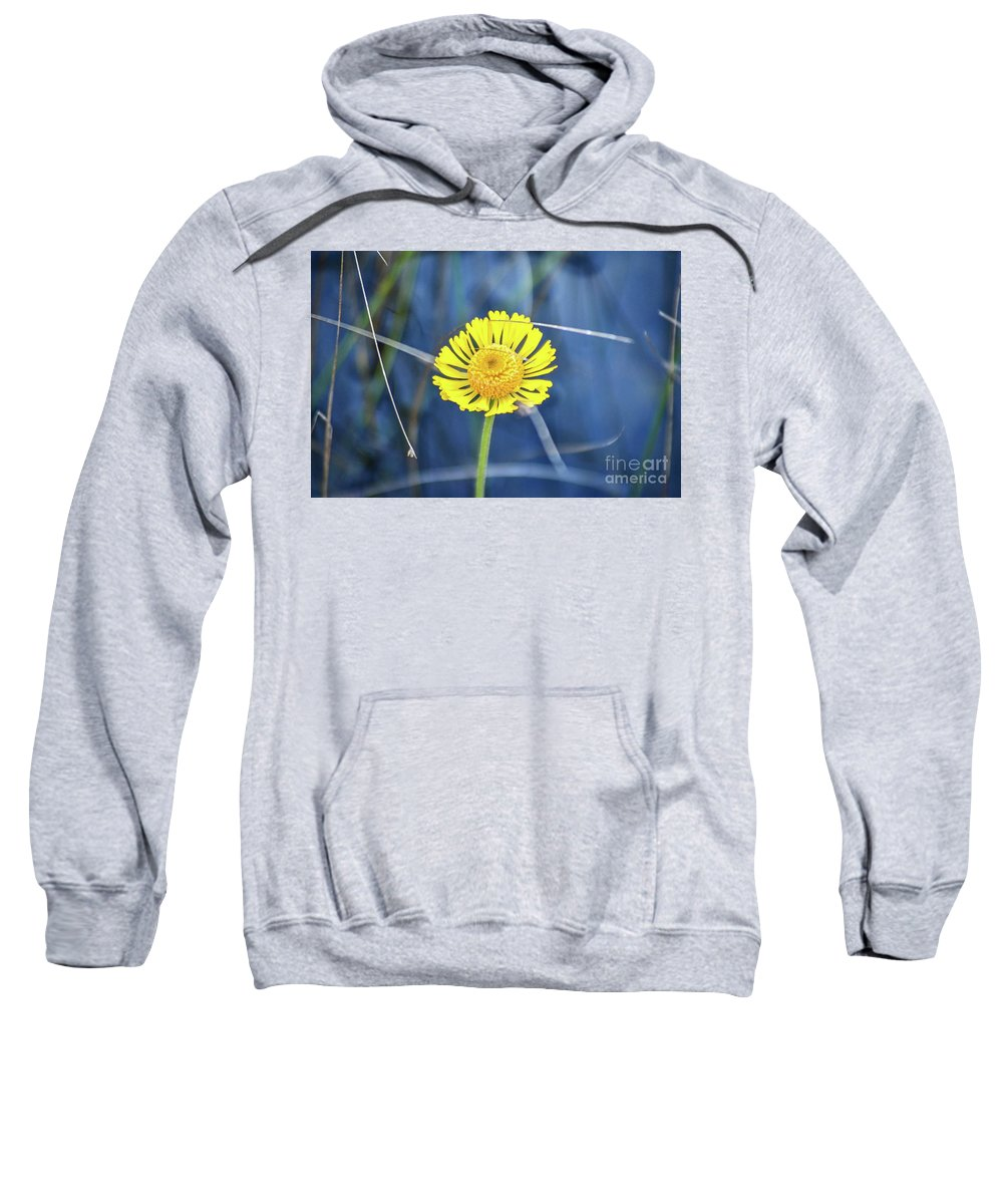 Everglades Sweatshirt featuring the photograph Wetland Wildflower by Third Eye Perspectives Photographic Fine Art