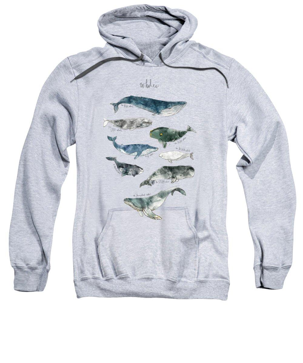 Whale Hooded Sweatshirts T-Shirts