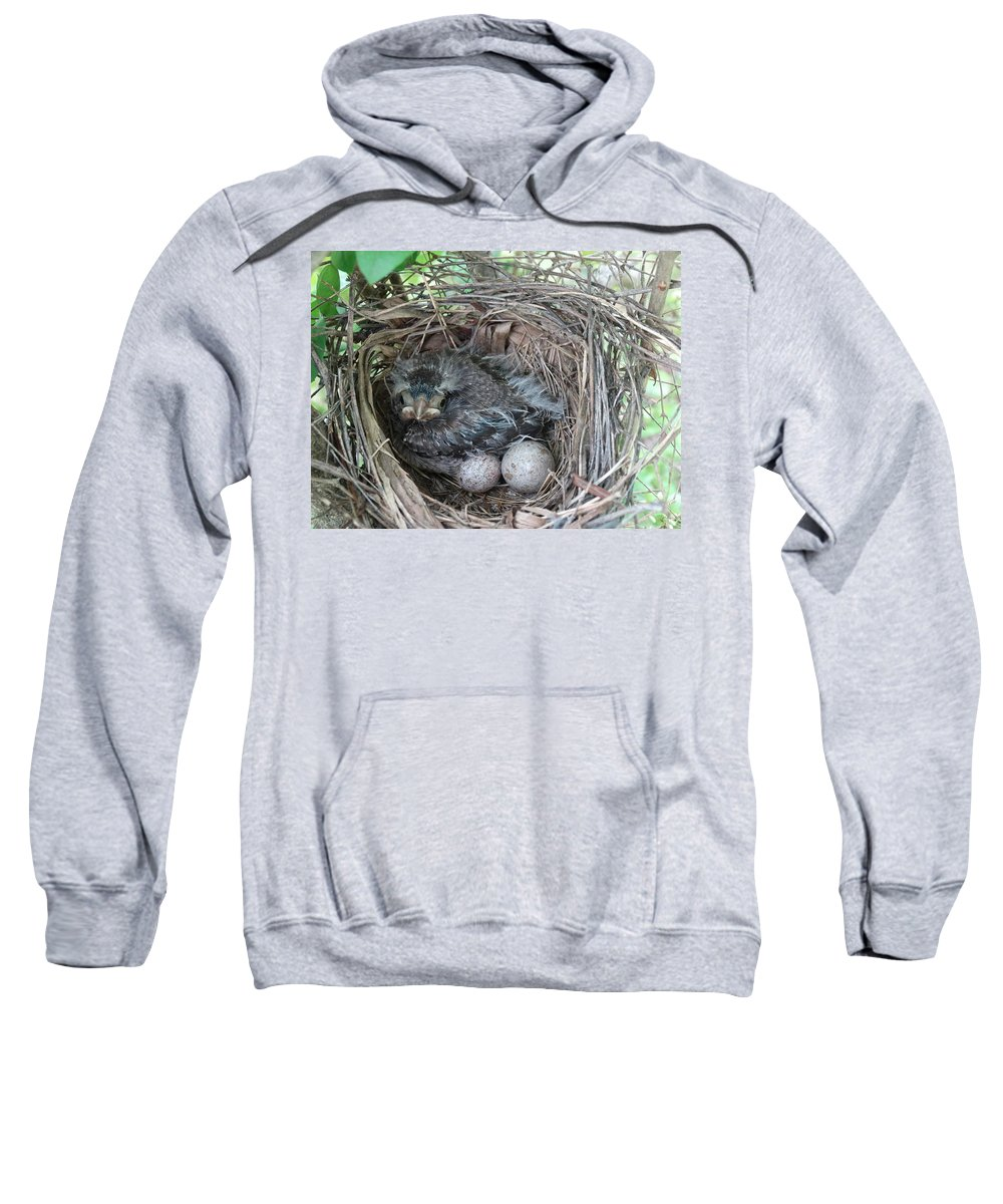 Bird Sweatshirt featuring the photograph What Are You Looking At by Greg Boutz