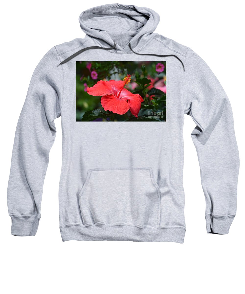 What Dreams May Come Sweatshirt featuring the photograph What Dreams May Come by Maria Urso