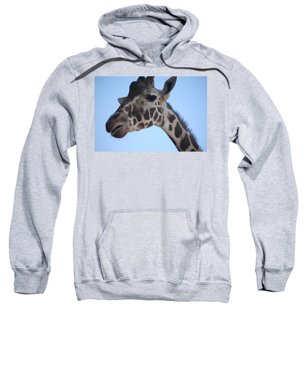 Animals Sweatshirt featuring the photograph Whatcha Looking At? by Lucy Bounds