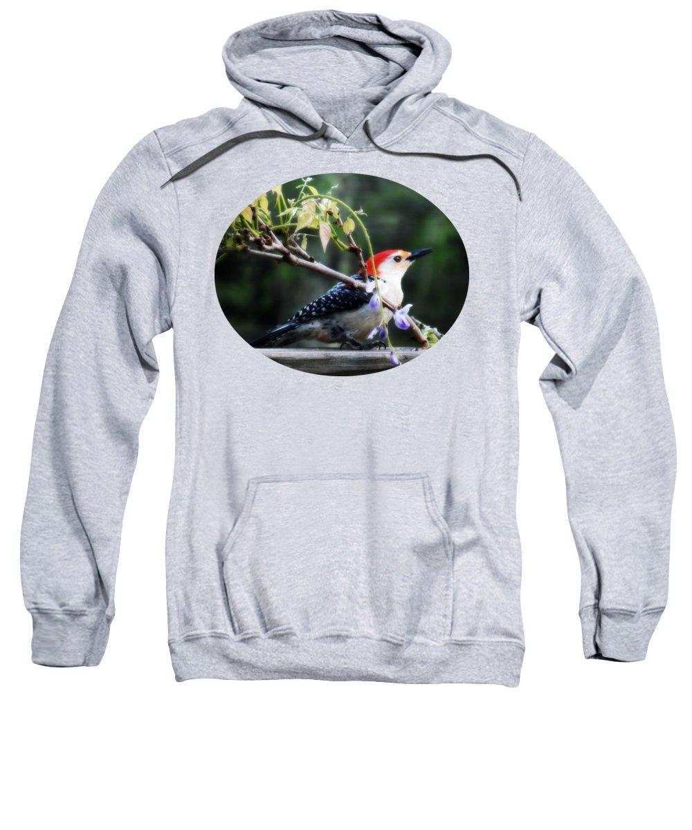Woodpecker Hooded Sweatshirts T-Shirts