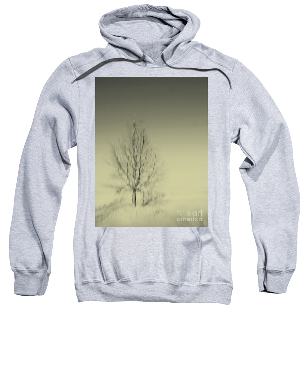 Dipasquale Sweatshirt featuring the photograph When You Wake Up I Will Have Gone by Dana DiPasquale