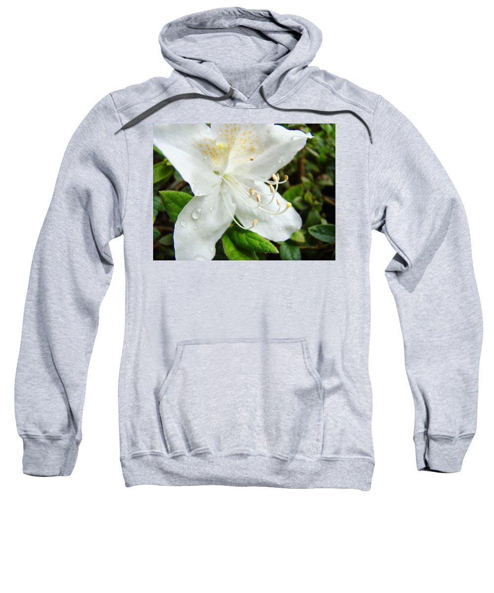 �azaleas Artwork� Sweatshirt featuring the photograph White Azalea Flower 9 Azaleas Raindrops Spring Art Prints Baslee Troutman by Baslee Troutman