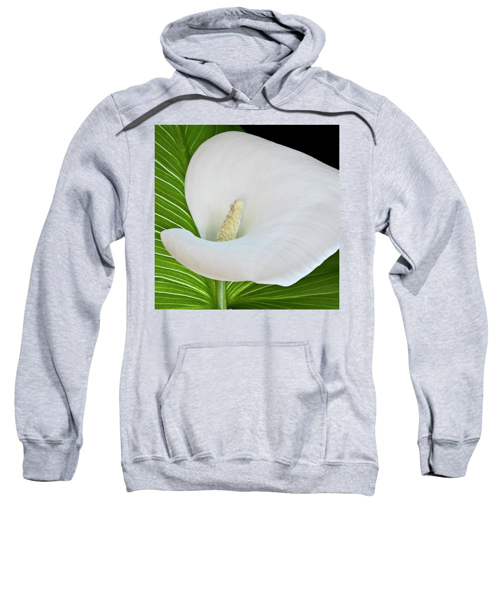 Calla Sweatshirt featuring the photograph White Calla by Heiko Koehrer-Wagner