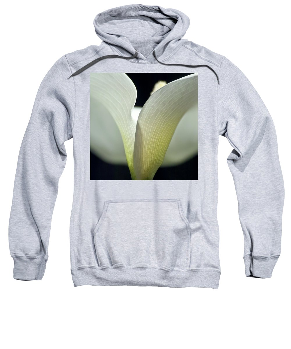 Calla Sweatshirt featuring the photograph White Calla Lily by Heiko Koehrer-Wagner