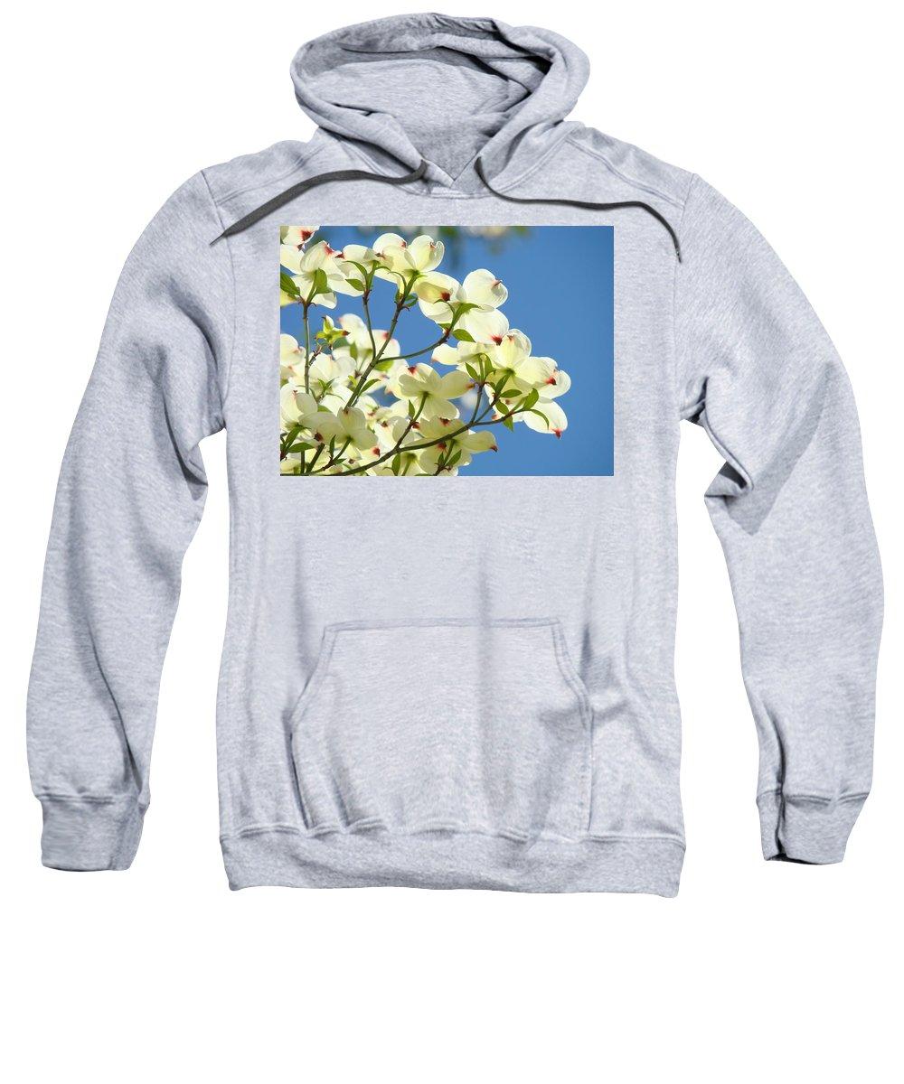Dogwood Sweatshirt featuring the photograph White Dogwood Flowers 1 Blue Sky Landscape Artwork Dogwood Tree Art Prints Canvas Framed by Baslee Troutman