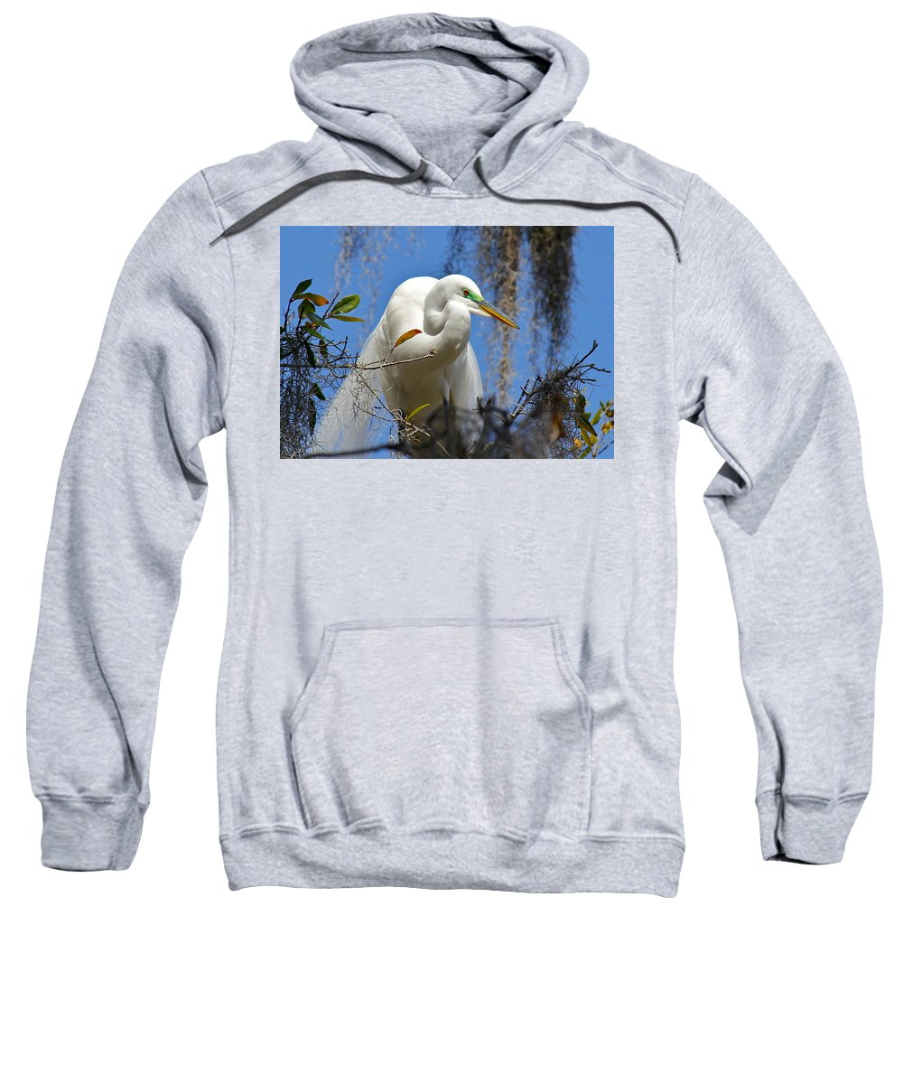Bird Sweatshirt featuring the photograph White Egret by Denise Mazzocco
