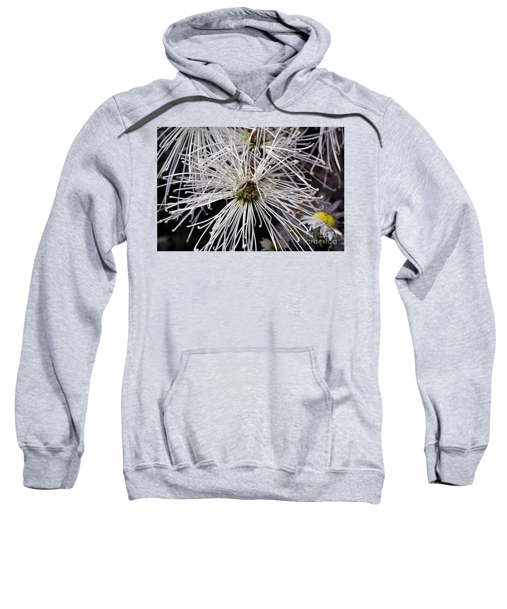 Clay Sweatshirt featuring the photograph White Flora by Clayton Bruster