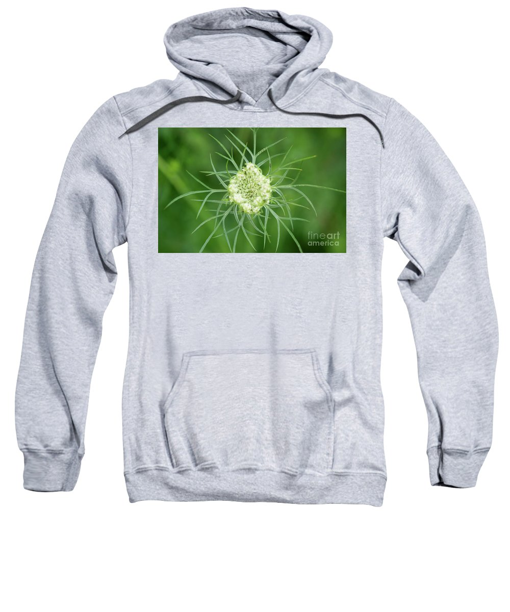 Ohio Flower Sweatshirt featuring the photograph White Flower Spidery Leaves by Michelle Himes