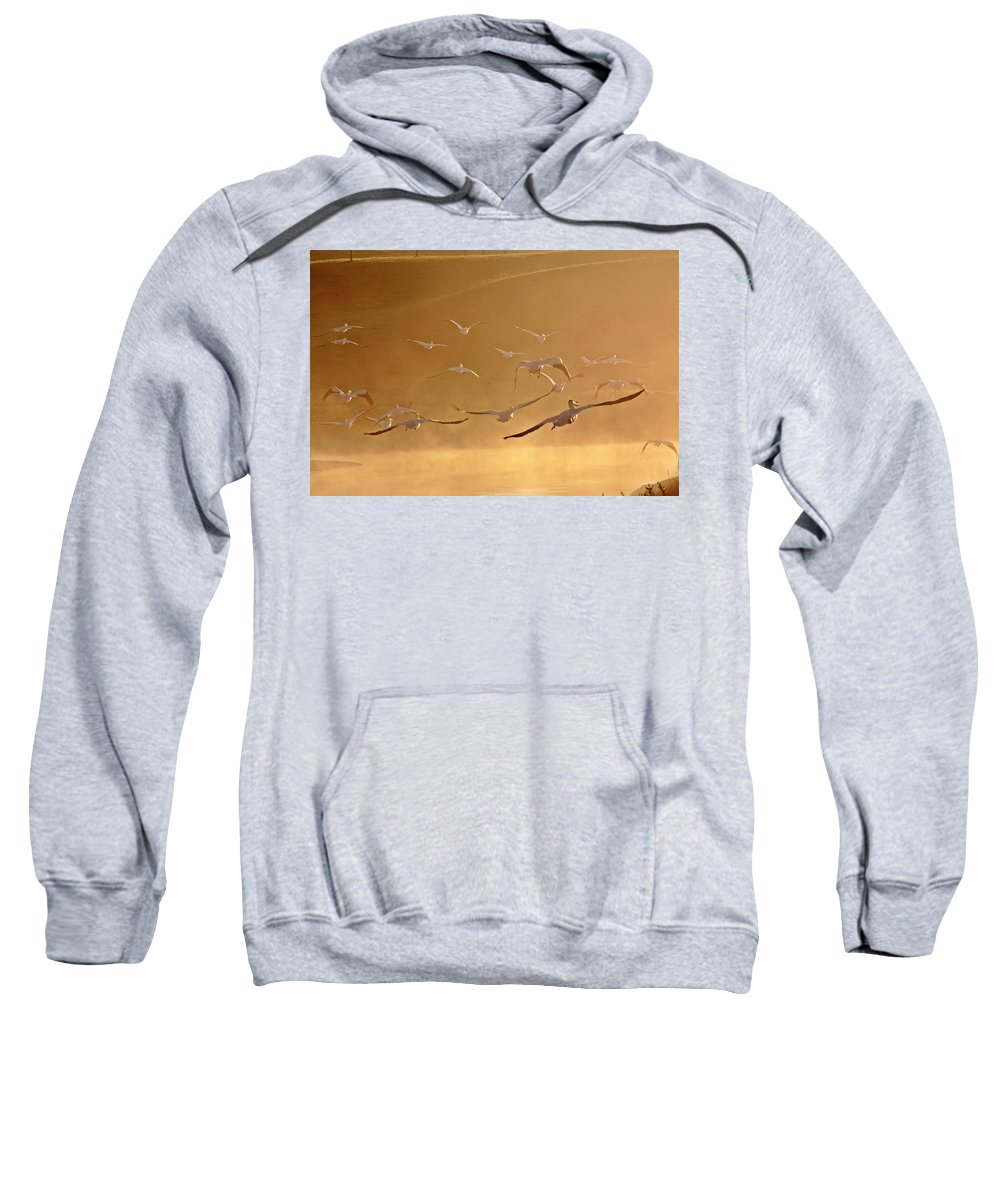 American Sweatshirt featuring the digital art White Pelicans Flying Through Morning Mist Over River by Mark Duffy