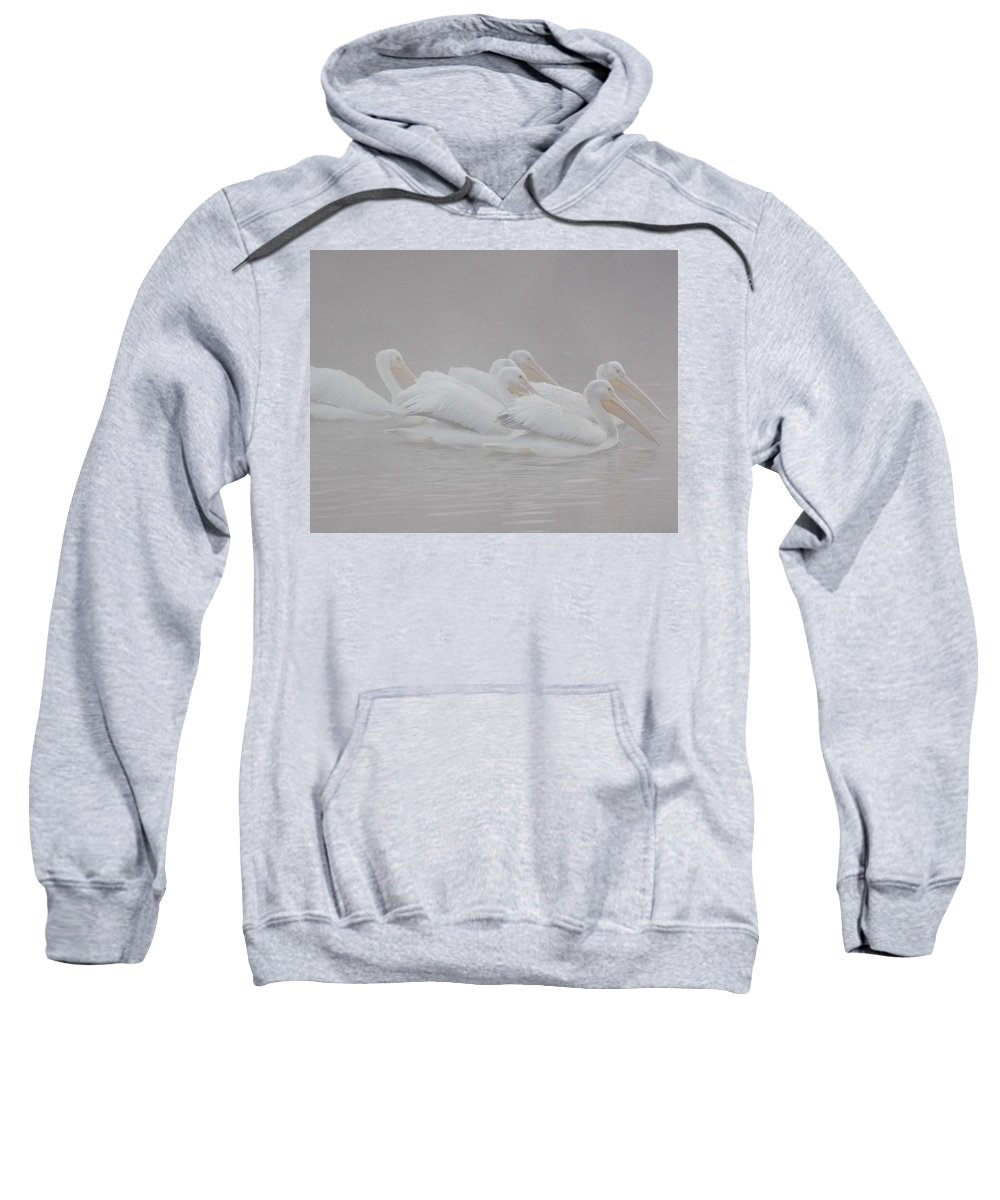 White Pelicans Sweatshirt featuring the photograph White Pelicans by Jay Styranka