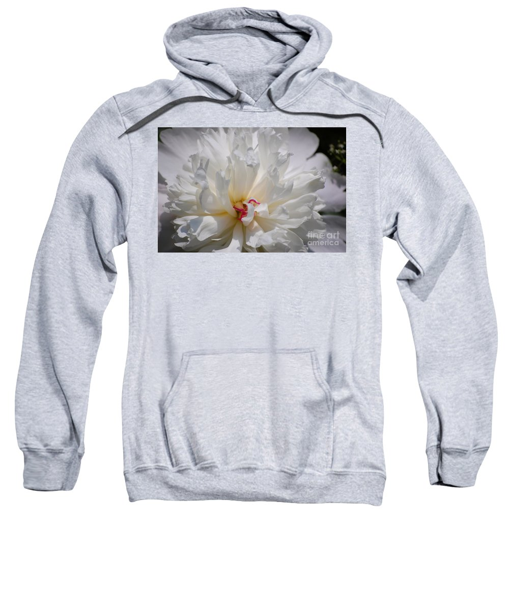 Digital Photography Sweatshirt featuring the photograph White Peony by David Lane
