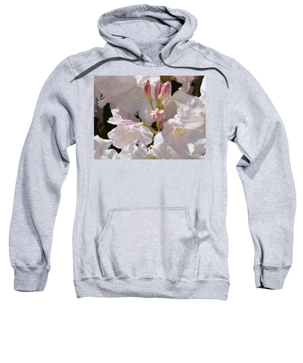 Rhodie Sweatshirt featuring the photograph White Rhodies Pink Rhododendrons Flowers Art Prints Canvas Botanical Baslee Troutman by Baslee Troutman