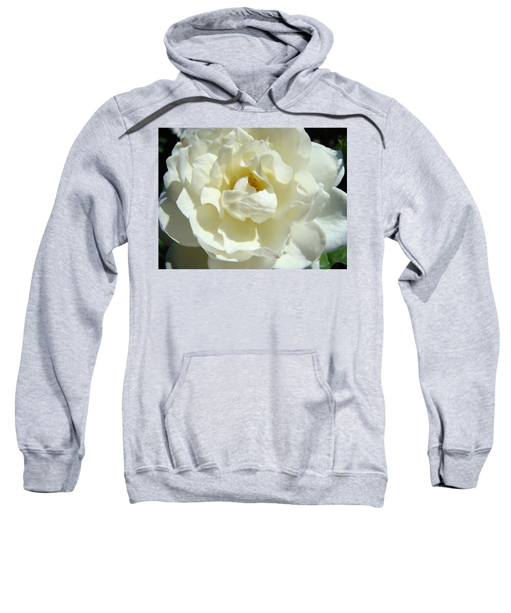 Rose Sweatshirt featuring the photograph White Rose Art Prints Summer Sunlit Roses Baslee Troutman by Baslee Troutman