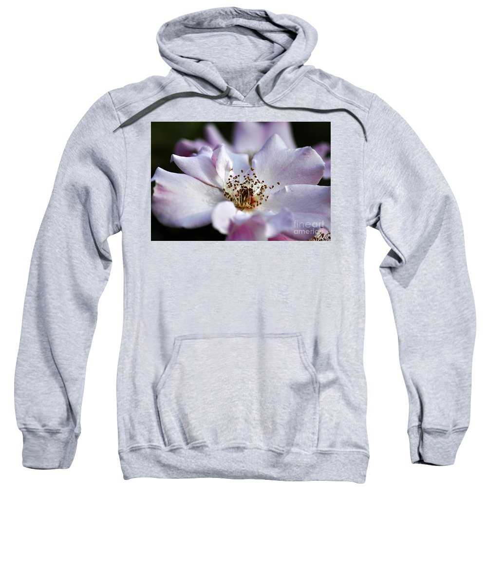 Clay Sweatshirt featuring the photograph White Rose by Clayton Bruster