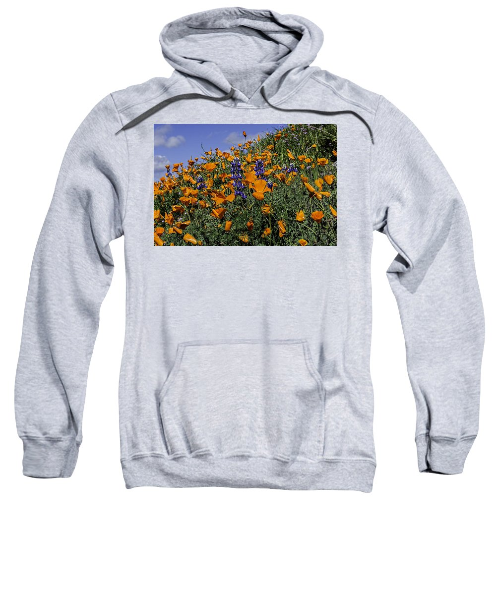 Poppy Sweatshirt featuring the photograph Wild California Poppies And Lupine by Jay Billings