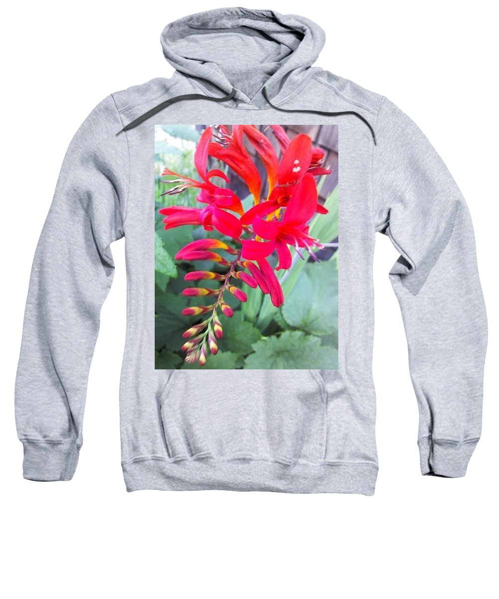 Dragon Flower Sweatshirt featuring the photograph Wild Flower by Chase Hoskins