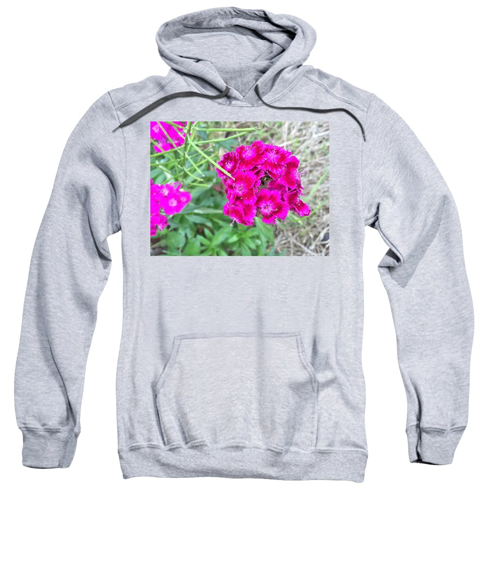 Pink Wild Flowers Sweatshirt featuring the photograph Wild Flowers by Lorraine Coughlin