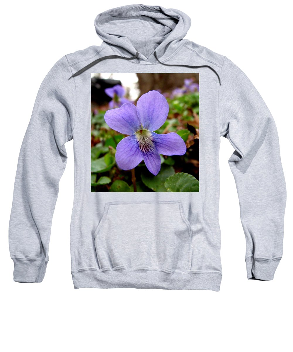 Violet Sweatshirt featuring the photograph Wild Violet 1 by J M Farris Photography