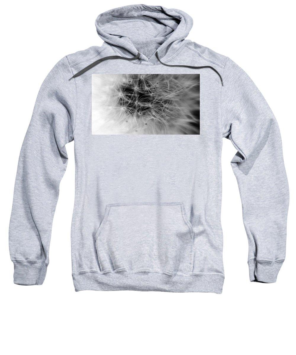 Digital Art Sweatshirt featuring the digital art Wildflower 6 Black N White by Belinda Cox