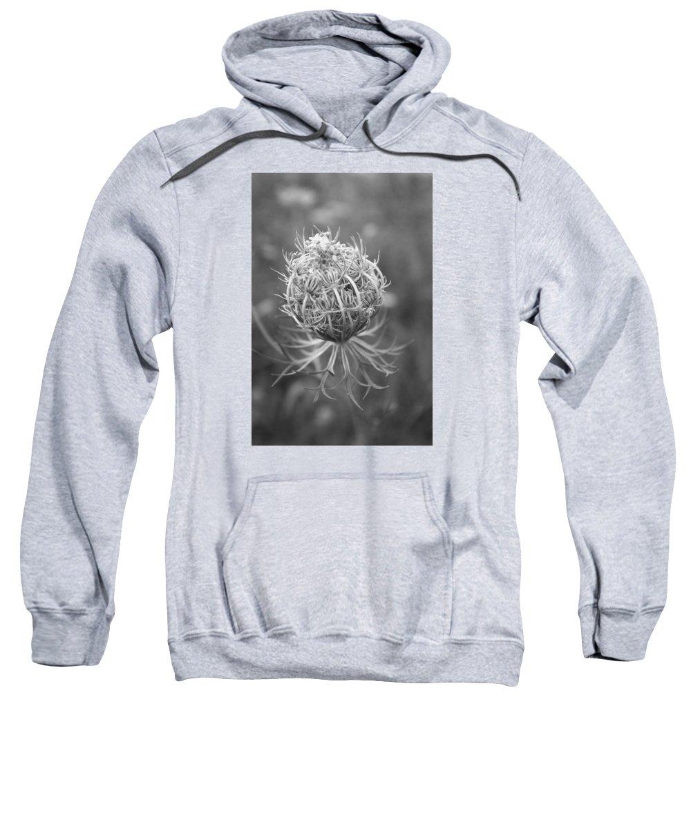 Flower Sweatshirt featuring the photograph Wildflower I by Phillippe Diederich