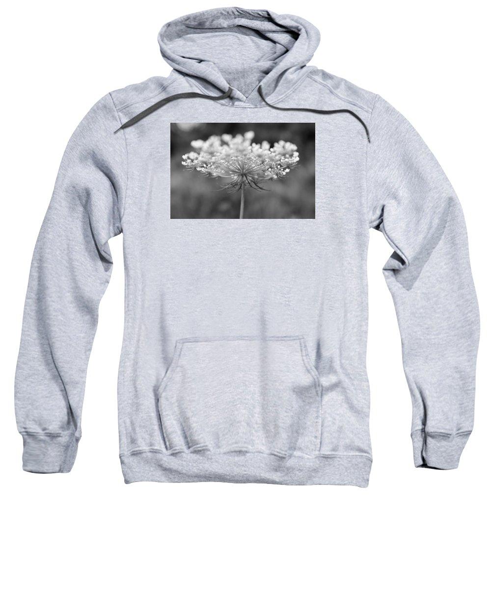 Flower Sweatshirt featuring the photograph Wildflower II by Phillippe Diederich