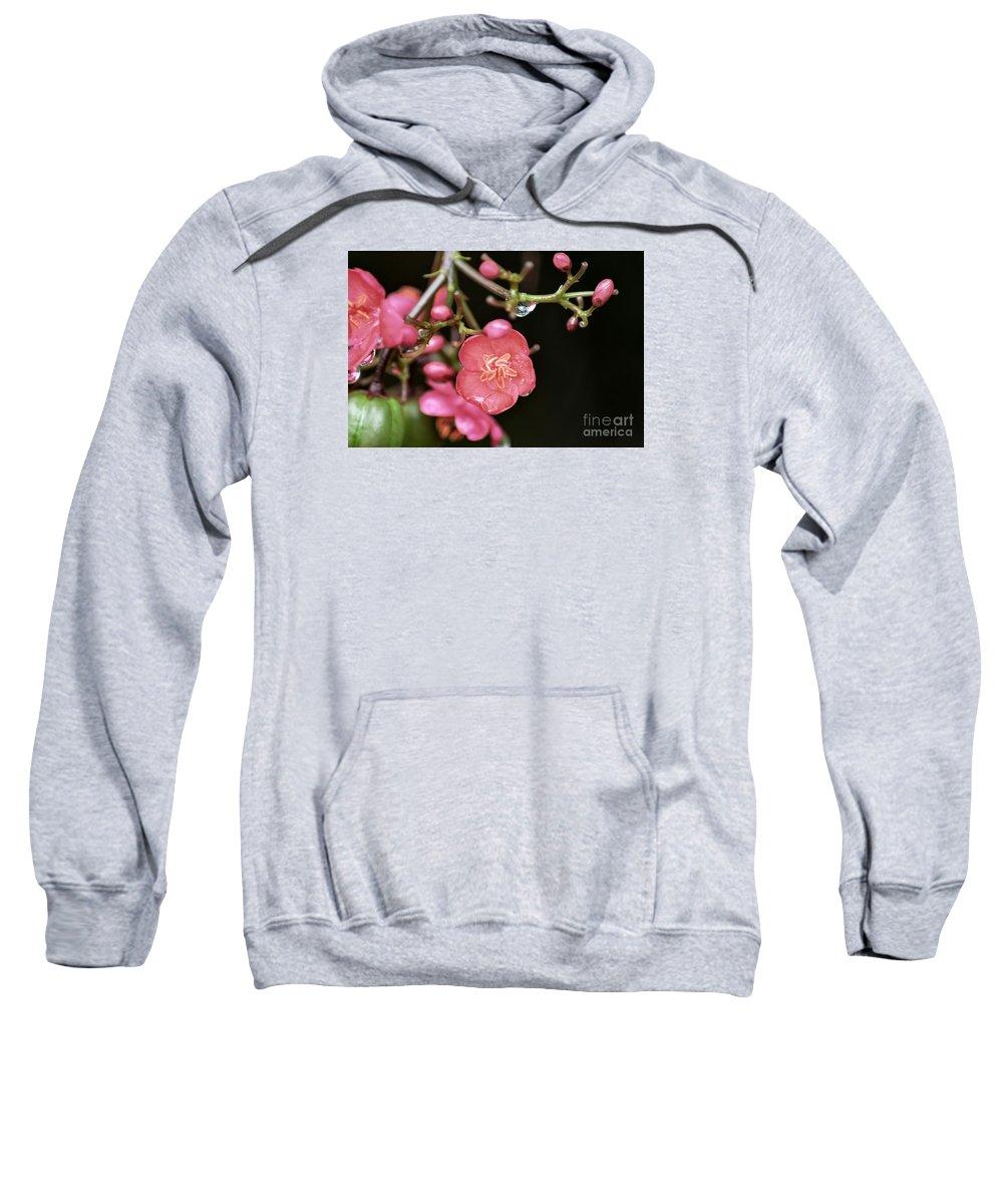Flower Sweatshirt featuring the photograph Wildflower Surprise by Glenn Forman