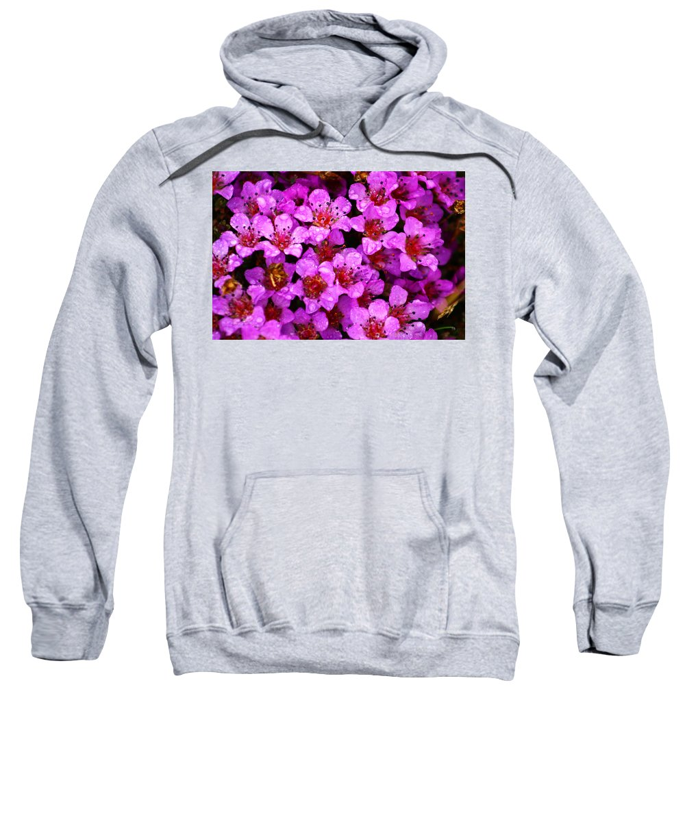 Wild Flowers Sweatshirt featuring the photograph Wildflowers by Anthony Jones