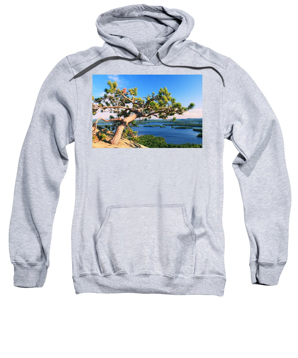 Windswept Sweatshirt featuring the photograph Windswept Pine On Rattlesnake Mountain by Roupen Baker