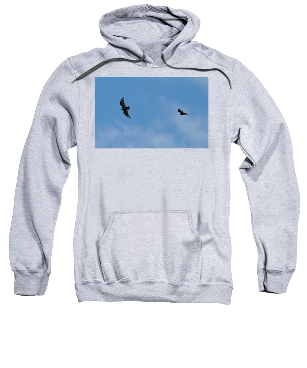 Hawks Sweatshirt featuring the photograph Wingman by Bill Cannon
